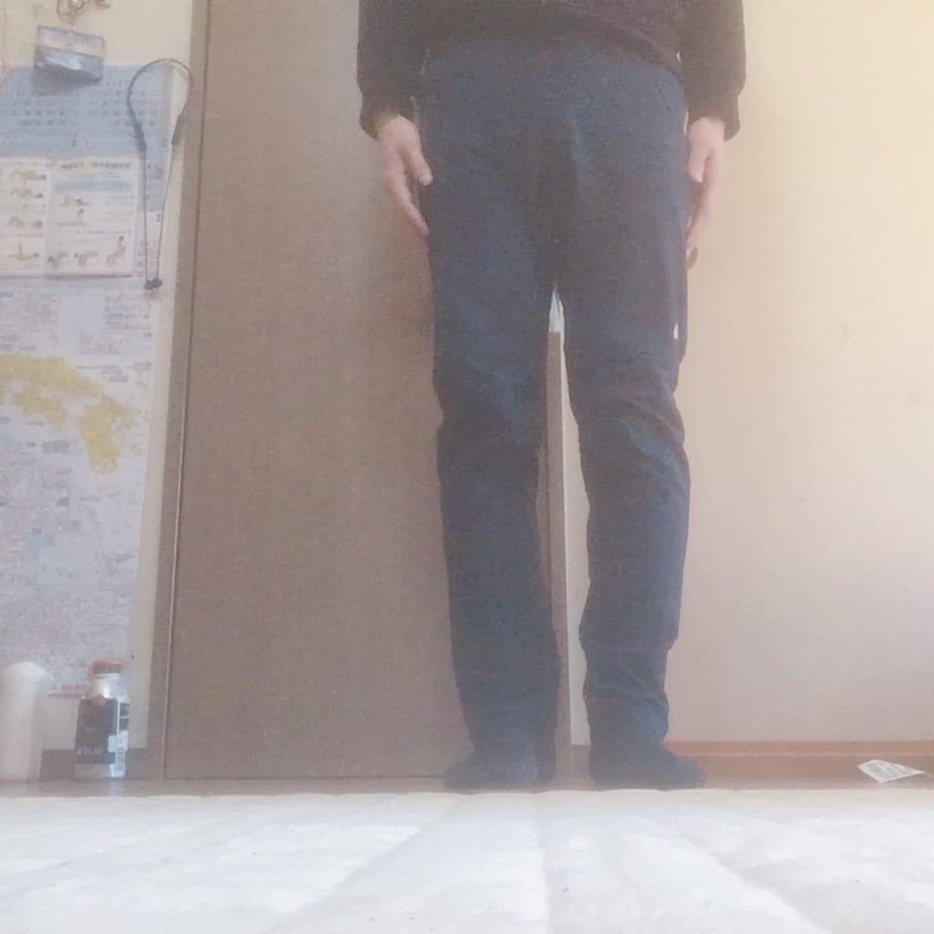 ノースフェイス アルパインライトパンツ 履いた状態正面
