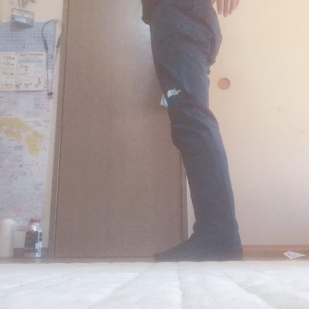 ノースフェイス アルパインライトパンツ 履いた状態側面